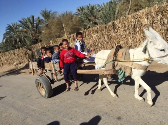 kids-donkey-cart